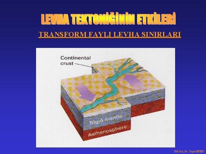 TRANSFORM FAYLI LEVHA SINIRLARI Yrd. Doç. Dr. Yaşar EREN