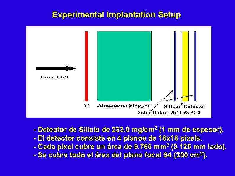 Experimental Implantation Setup - Detector de Silicio de 233. 0 mg/cm 2 (1 mm