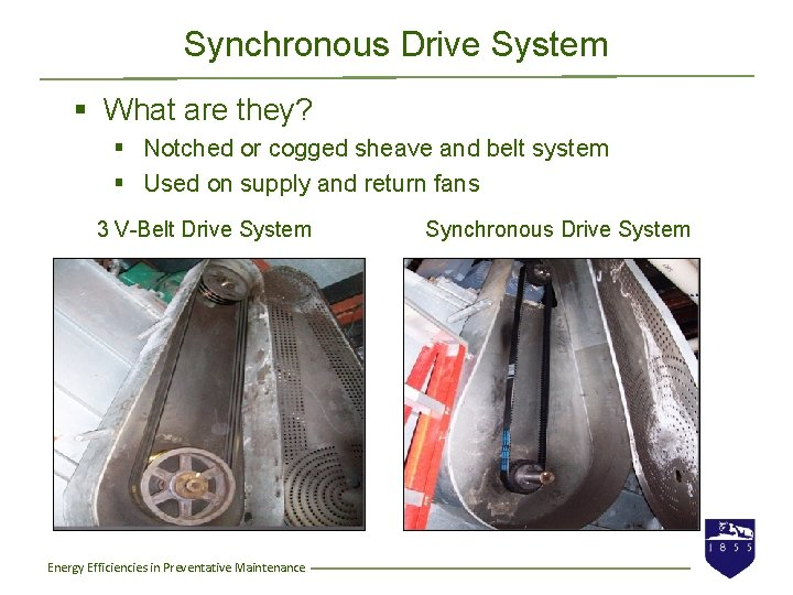 Synchronous Drive System § What are they? § Notched or cogged sheave and belt