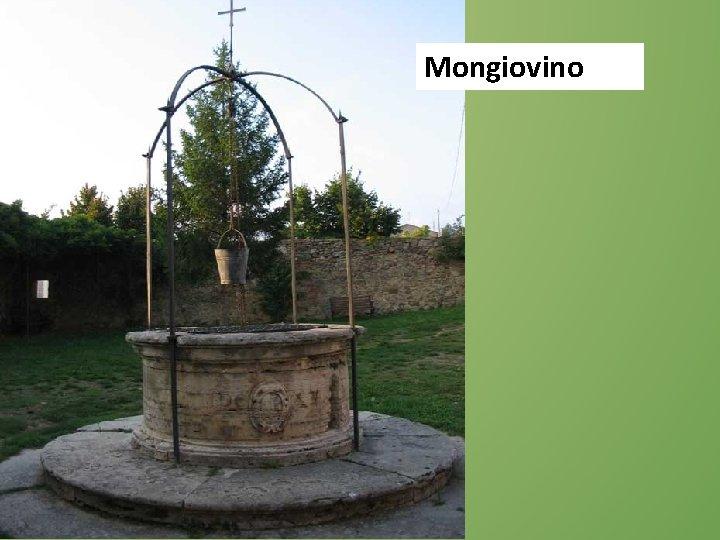 Mongiovino