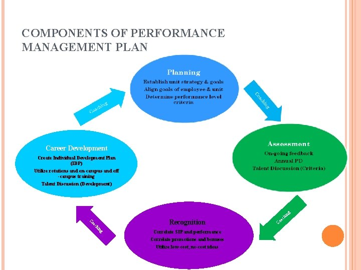 COMPONENTS OF PERFORMANCE MANAGEMENT PLAN Career Development Create Individual Development Plan (IDP) Utilize rotations