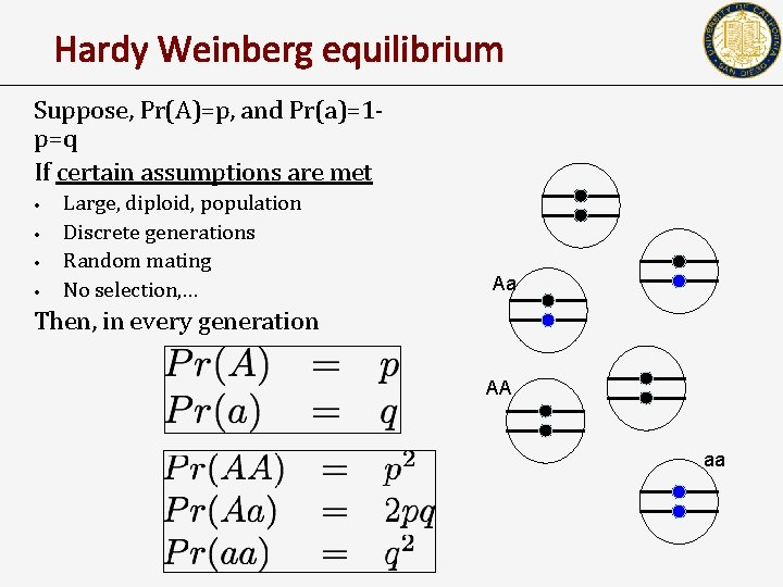 Hardy Weinberg equilibrium Suppose, Pr(A)=p, and Pr(a)=1 p=q If certain assumptions are met •