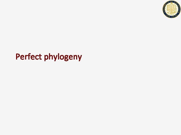 Perfect phylogeny
