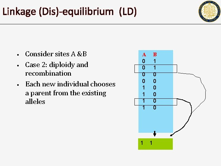 Linkage (Dis)-equilibrium (LD) • • • Consider sites A &B Case 2: diploidy and