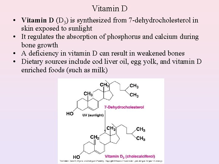 Vitamin D • Vitamin D (D 3) is synthesized from 7 -dehydrocholesterol in skin