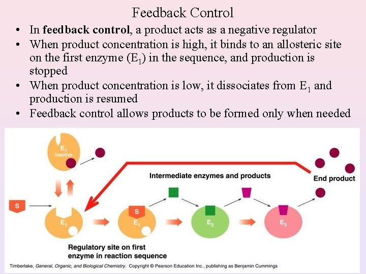 Feedback Control • In feedback control, a product acts as a negative regulator •