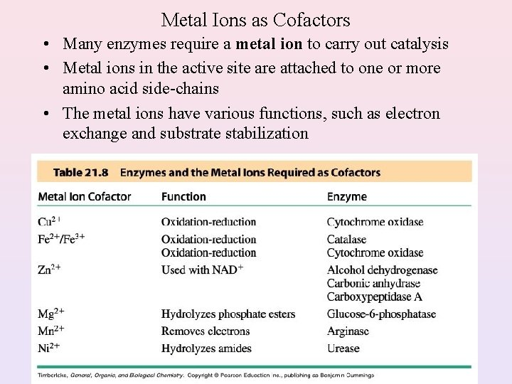 Metal Ions as Cofactors • Many enzymes require a metal ion to carry out