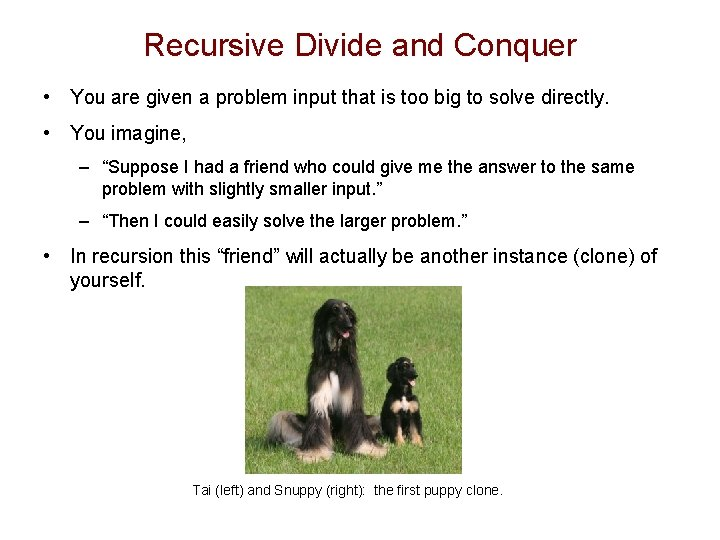 Recursive Divide and Conquer • You are given a problem input that is too