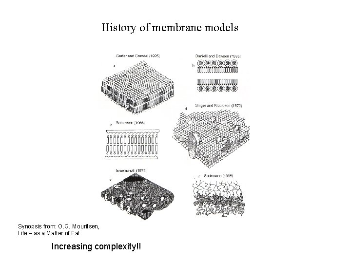 History of membrane models Synopsis from: O. G. Mouritsen, Life – as a Matter