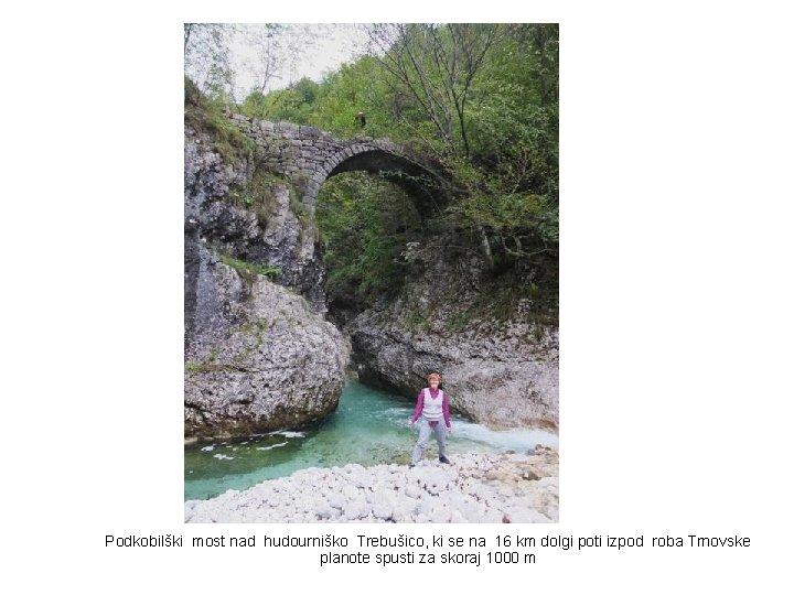 Podkobilški most nad hudourniško Trebušico, ki se na 16 km dolgi poti izpod roba