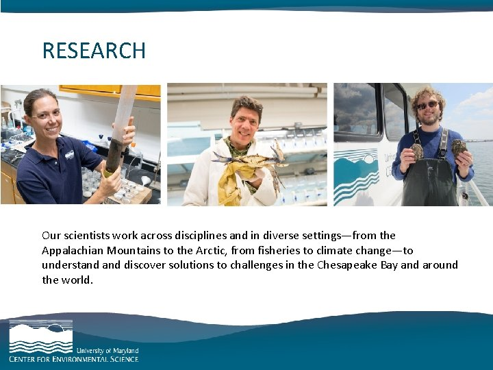 RESEARCH category goes here and here Our scientists work across disciplines and in diverse