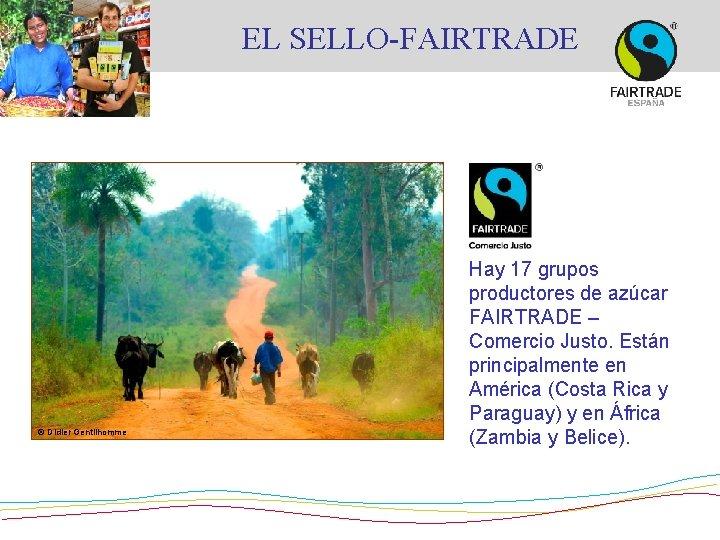 EL SELLO-FAIRTRADE © Didier Gentilhomme Hay 17 grupos productores de azúcar FAIRTRADE – Comercio