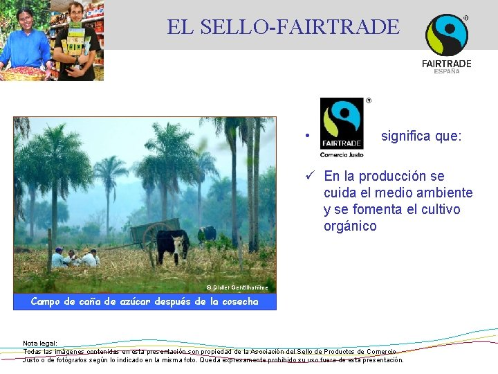 EL SELLO-FAIRTRADE • significa que: ü En la producción se cuida el medio ambiente