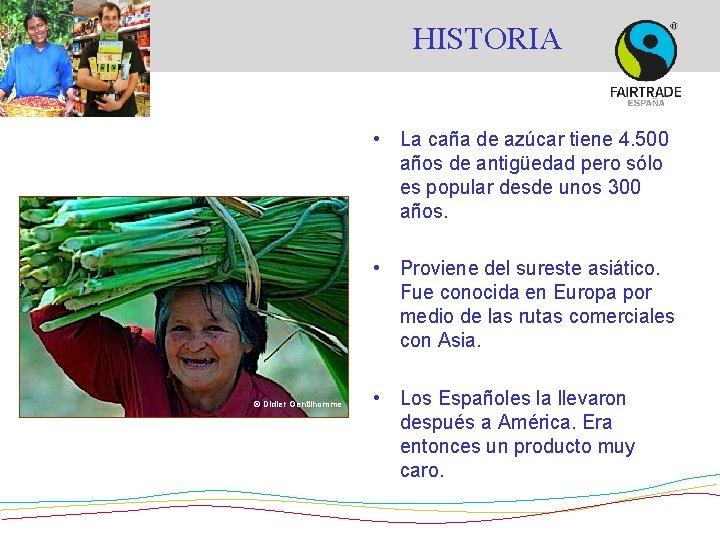 HISTORIA • La caña de azúcar tiene 4. 500 años de antigüedad pero sólo