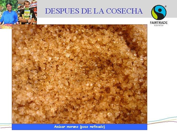 DESPUES DE LA COSECHA © Asociación azucarera de El Salvador Azúcar moreno (poco refinado)