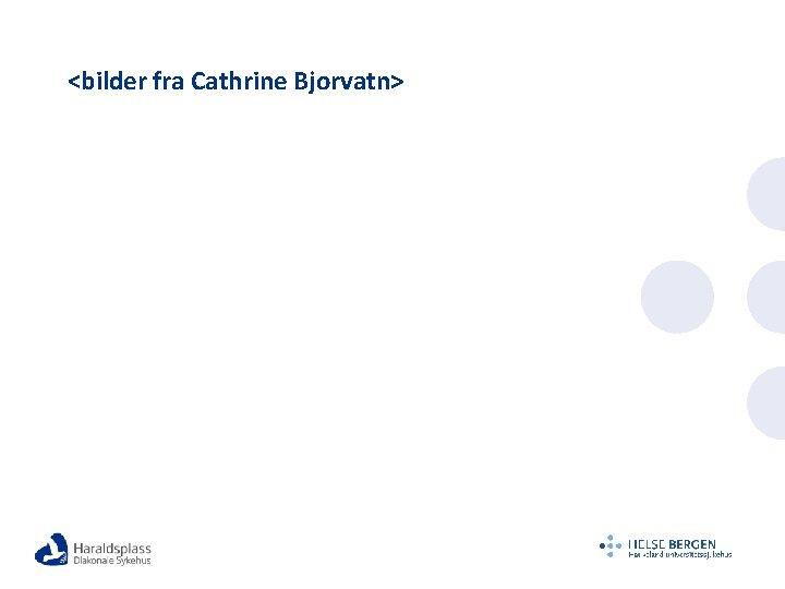 <bilder fra Cathrine Bjorvatn>