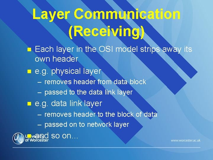 Layer Communication (Receiving) n n Each layer in the OSI model strips away its
