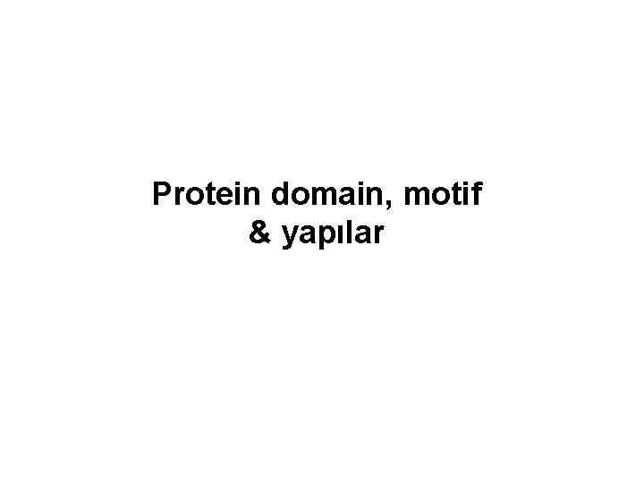Protein domain, motif & yapılar