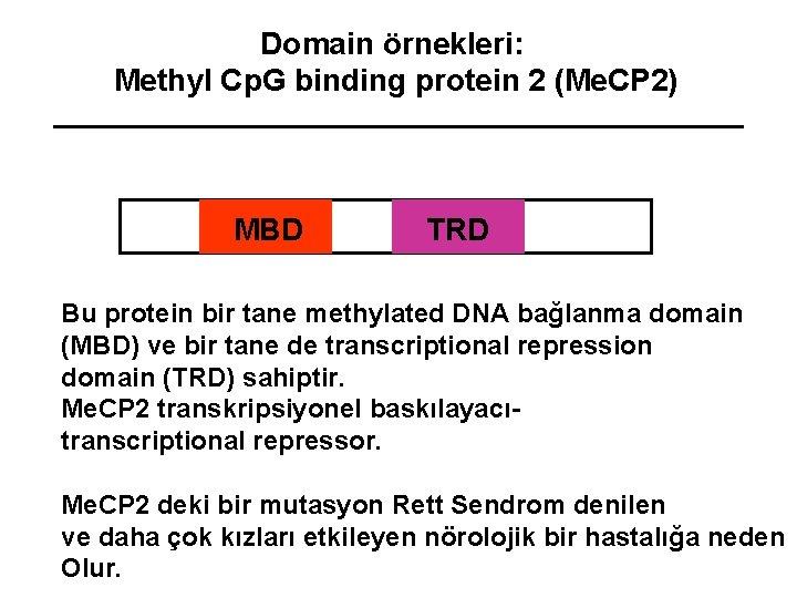 Domain örnekleri: Methyl Cp. G binding protein 2 (Me. CP 2) MBD TRD Bu