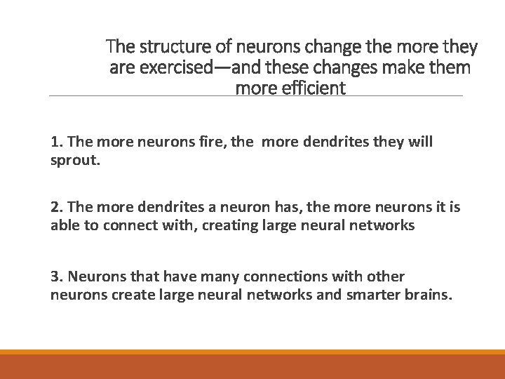 The structure of neurons change the more they are exercised—and these changes make them