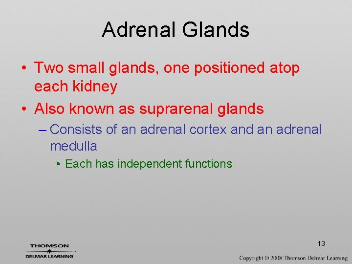 Adrenal Glands • Two small glands, one positioned atop each kidney • Also known