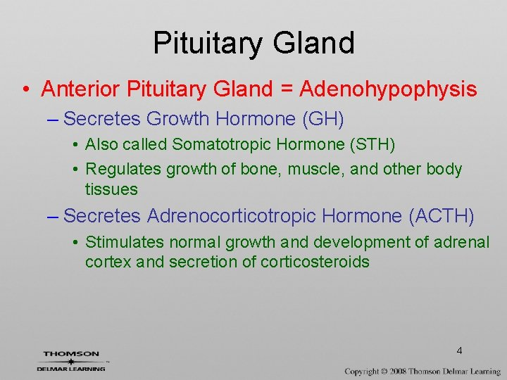 Pituitary Gland • Anterior Pituitary Gland = Adenohypophysis – Secretes Growth Hormone (GH) •