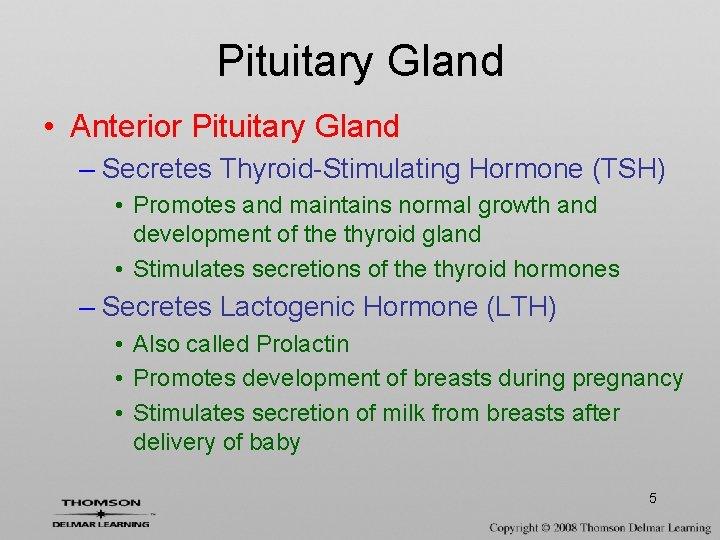 Pituitary Gland • Anterior Pituitary Gland – Secretes Thyroid-Stimulating Hormone (TSH) • Promotes and