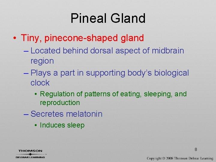 Pineal Gland • Tiny, pinecone-shaped gland – Located behind dorsal aspect of midbrain region