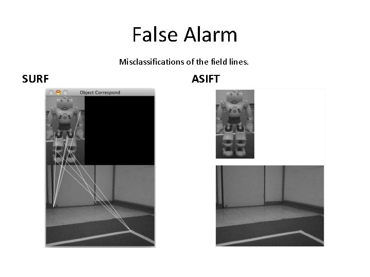 False Alarm Misclassifications of the field lines. SURF ASIFT