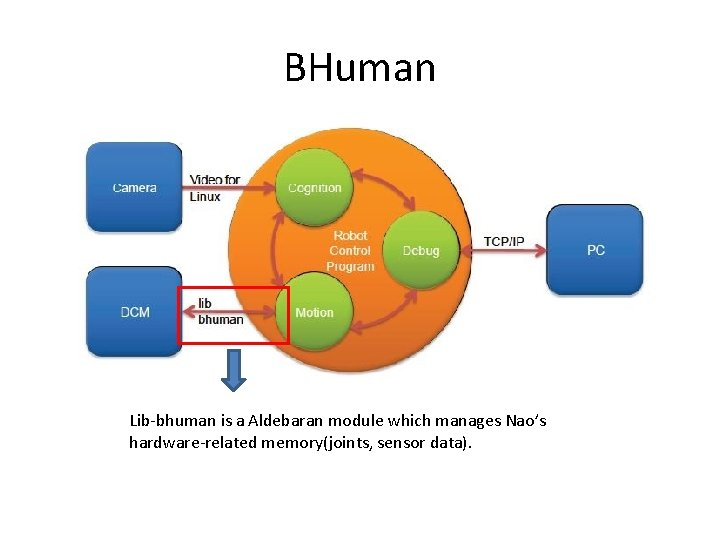 BHuman Lib-bhuman is a Aldebaran module which manages Nao's hardware-related memory(joints, sensor data).