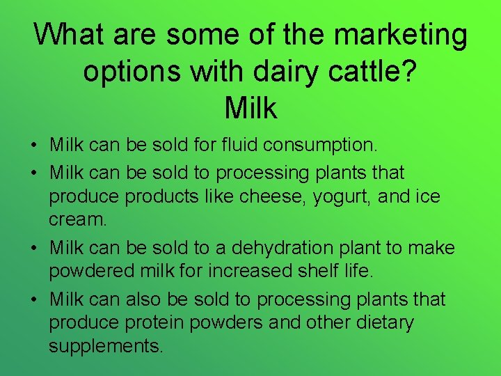 What are some of the marketing options with dairy cattle? Milk • Milk can