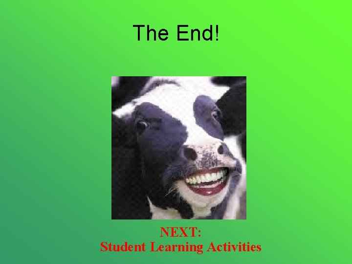 The End! NEXT: Student Learning Activities