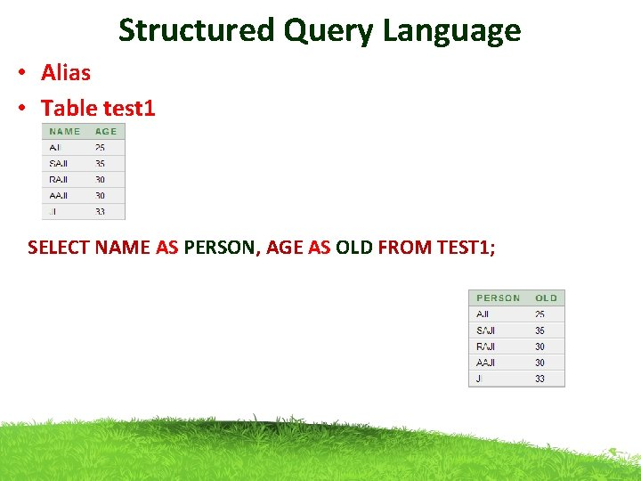 Structured Query Language • Alias • Table test 1 SELECT NAME AS PERSON, AGE