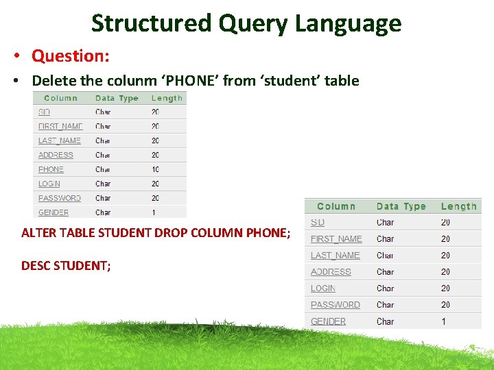 Structured Query Language • Question: • Delete the colunm 'PHONE' from 'student' table ALTER
