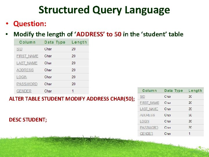 Structured Query Language • Question: • Modify the length of 'ADDRESS' to 50 in