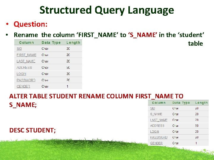 Structured Query Language • Question: • Rename the column 'FIRST_NAME' to 'S_NAME' in the