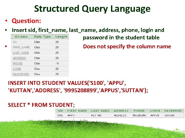 Structured Query Language • Question: • Insert sid, first_name, last_name, address, phone, login and