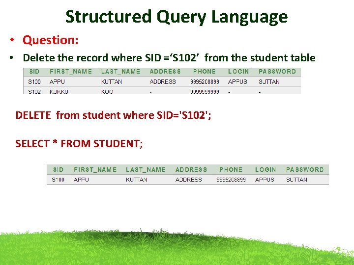 Structured Query Language • Question: • Delete the record where SID ='S 102' from