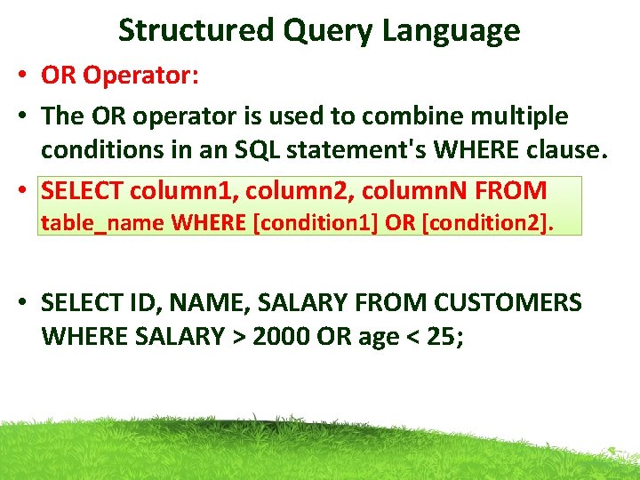 Structured Query Language • OR Operator: • The OR operator is used to combine