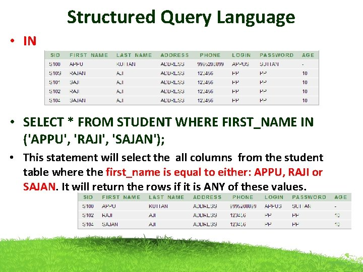 Structured Query Language • IN • SELECT * FROM STUDENT WHERE FIRST_NAME IN ('APPU',