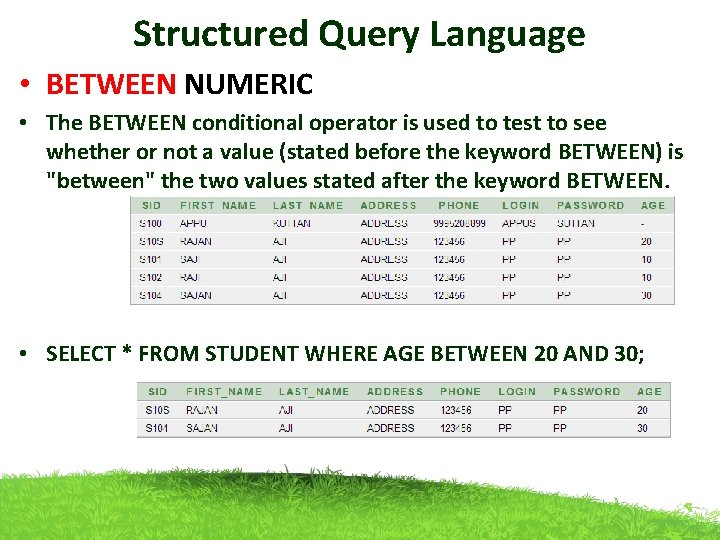 Structured Query Language • BETWEEN NUMERIC • The BETWEEN conditional operator is used to