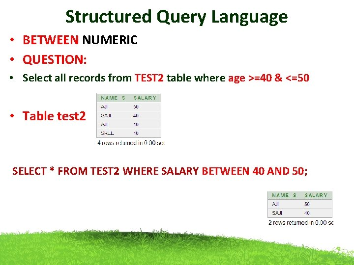 Structured Query Language • BETWEEN NUMERIC • QUESTION: • Select all records from TEST