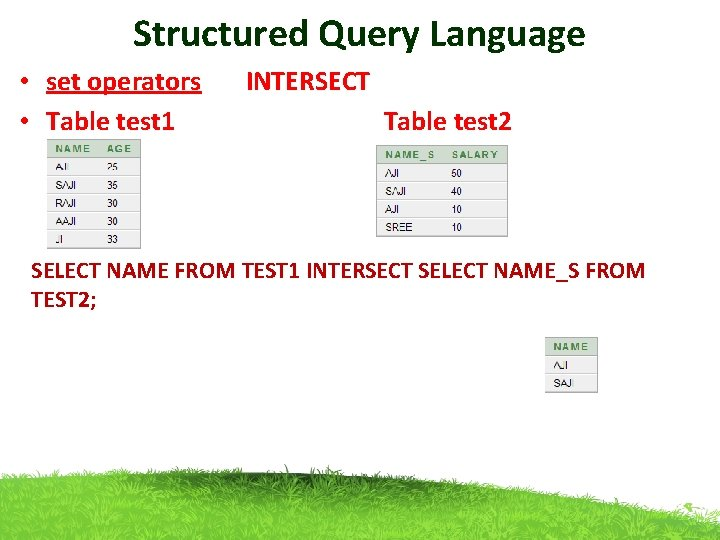 Structured Query Language • set operators INTERSECT • Table test 1 Table test 2