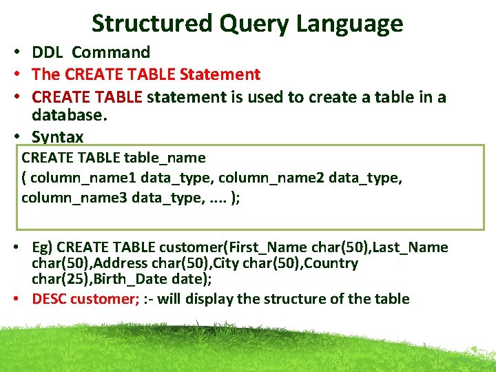 Structured Query Language • DDL Command • The CREATE TABLE Statement • CREATE TABLE