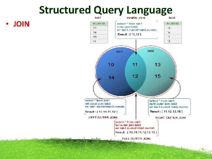 Structured Query Language • JOIN