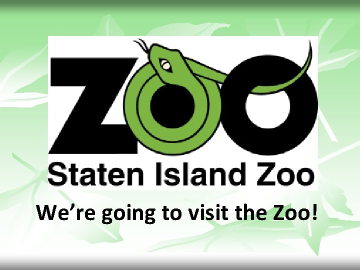 We're going to visit the Zoo!