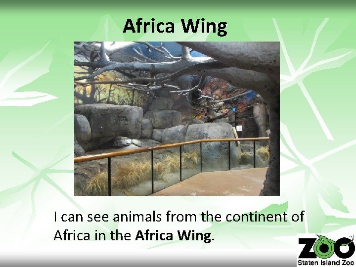 Africa Wing I can see animals from the continent of Africa in the Africa