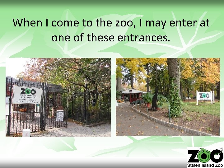 When I come to the zoo, I may enter at one of these entrances.