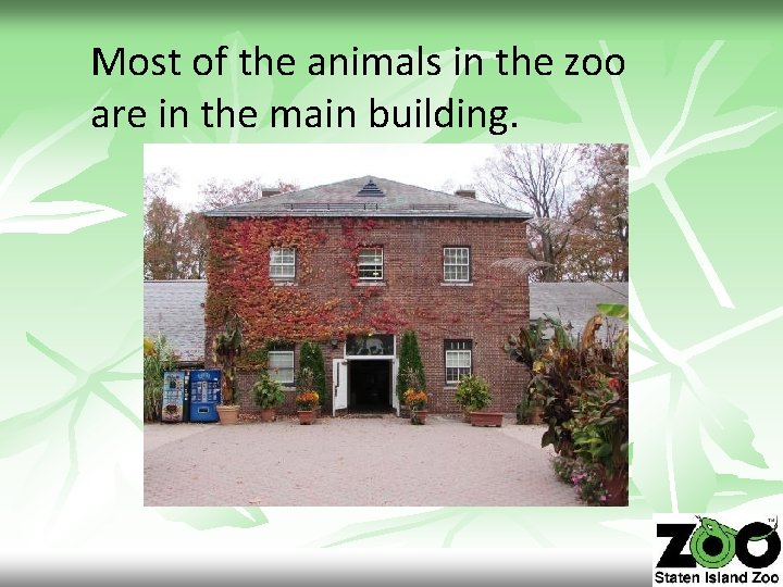 Most of the animals in the zoo are in the main building.