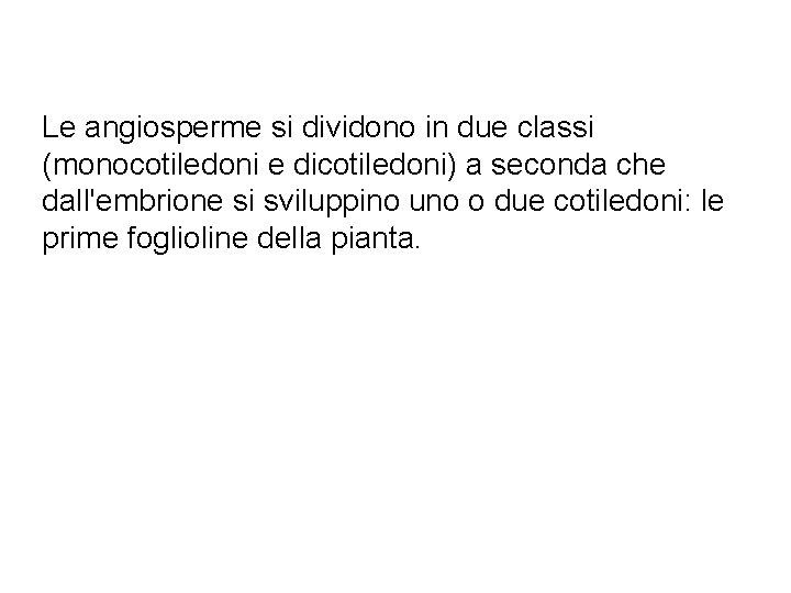 Le angiosperme si dividono in due classi (monocotiledoni e dicotiledoni) a seconda che dall'embrione